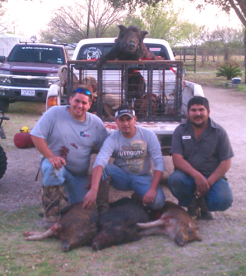 Hog Hunting in South Texas
